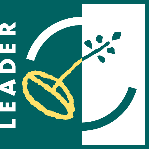 logo leader high